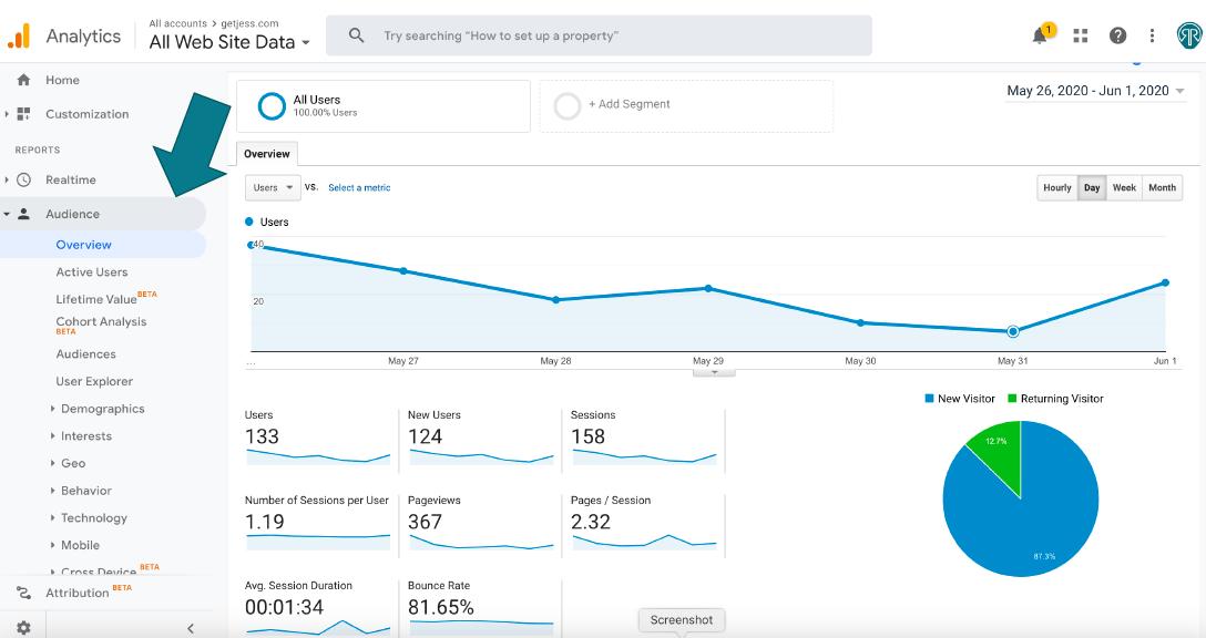 screenshot of google analytics audience overview report