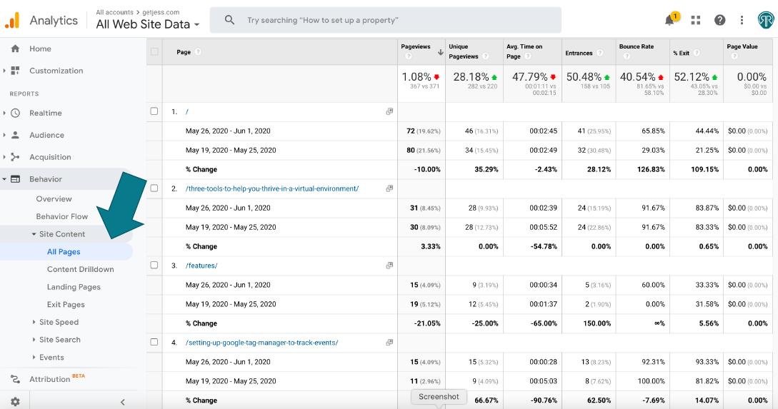 screenshot of google analytics behavior report