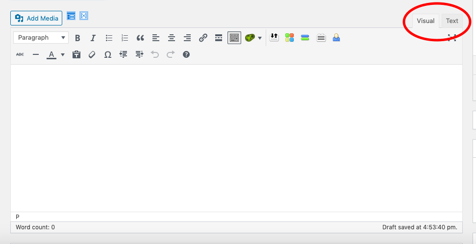 screenshot of visual text editor in wordpress